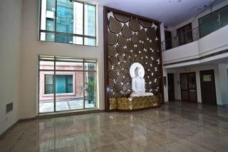 Y-walls Design_Buddha Jaali Wall_Interiors_Interior Design_Art Installation_Craft_India